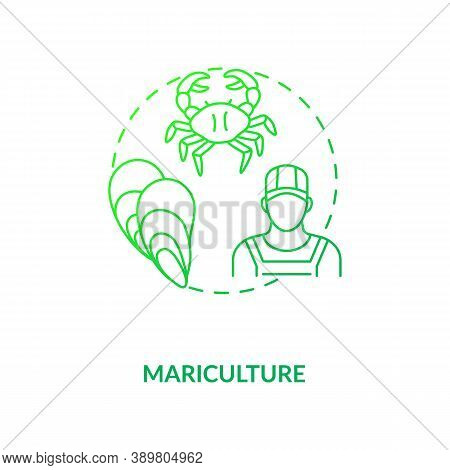 Mariculture Concept Icon. Shellfish Production. Seafoods Growing Places. Luxury Meals Ingredients Pi