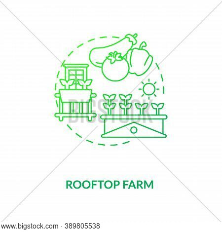Rooftop Farm Concept Icon. Futuristic Inovative Gardening Options. City Buildings Rooftops Food Fiel