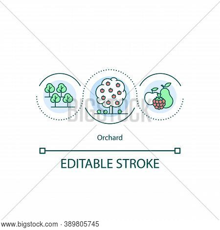 Orchard Concept Icon. Trees And Shrubs Planting Idea Thin Line Illustration. Fruit Garden. Fruits An