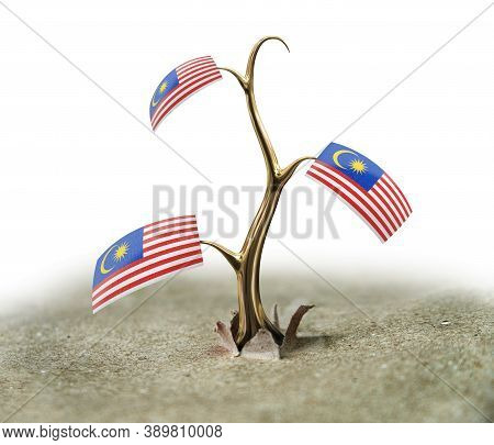 3d Illustration. 3d Sprout With Malaysia Flag On White
