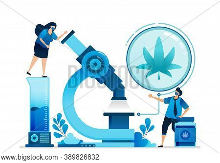 Cannabis Vector Illustrations. Research And Development Of Ganja For Education, Health And Commercia