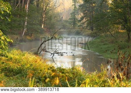 Morning Autumn Mist Rising Over A Small River. Autumn Morning. A Small, Unregulated, Wild River Flow