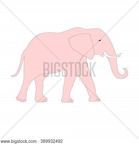 Pink Elephant Object Isolated Art Design Stock Vector Illustration For Web, For Print, For Coloring
