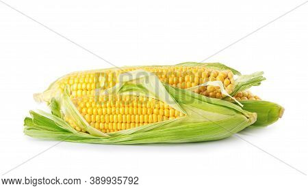 Ripe Raw Corn Cobs With Husk On White Background