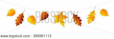 Autumn Leaves Border. Collection Of Autumn Leaves Oak, Maple, Hawthorn, Aspen. Set Of Yellow, Orange