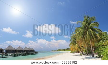 A scene of palm trees and water villa cottages at Kuredu island, Maldives, Lhaviyani atoll