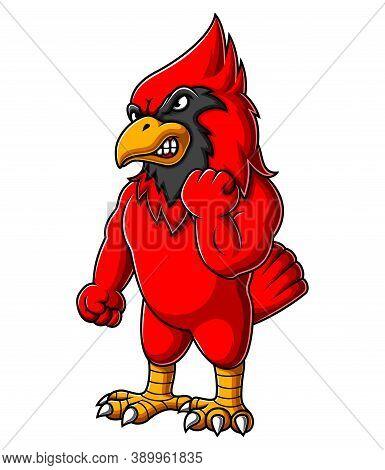 Angry A Cardinal Bird Cartoon Of Illustration