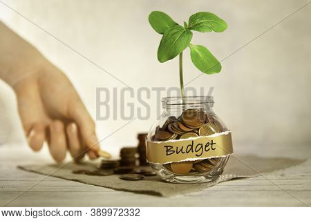 Budget. Glass Jar With Coins And A Plant, In The Background A Female Hand Puts Coins Near A Glass Ja