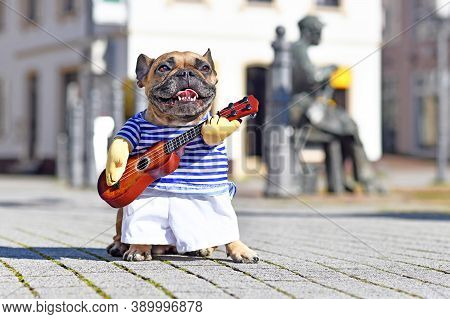 French Bulldog Dog Dressed Up As Street Perfomer Musician Wearing A Funny Costume With Striped Shirt