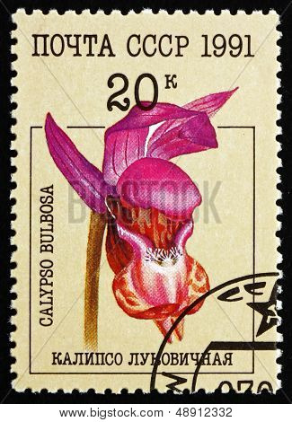 Postage Stamp Russia 1991 Fairy Slipper, Orchid