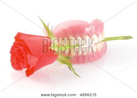 Dentures With Rose.