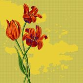 bouquet of tulips, vintage vector illustration. This is file of EPS8 format. poster