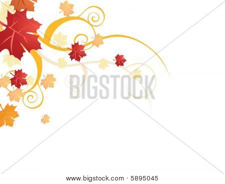 Autumn leaves vector illustration on white