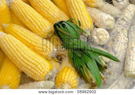 Corn Boiled In Water And Pandan