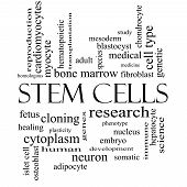 Stem Cells Word Cloud Concept in black and white with great terms such as research human medical and more. poster