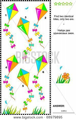 Visual puzzle or picture riddle: Find two identical kites. Answer included. poster