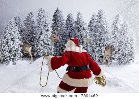 Santa Trying To Catch Reindeer