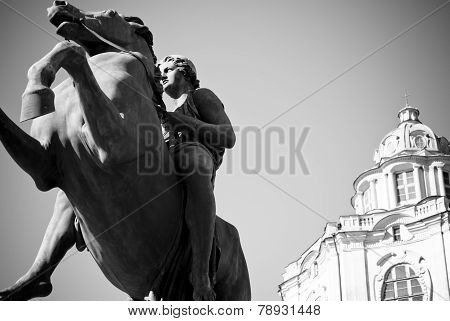 Prancing Horse In Royal Palace Of Turin (dioscuro Castor Statue)