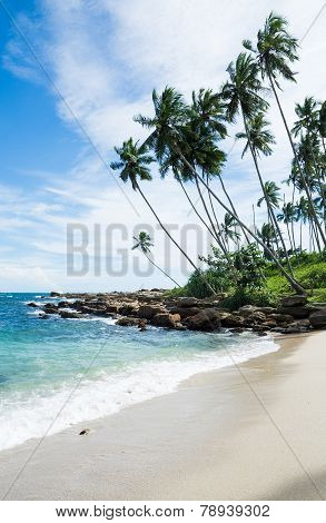 Tropical rocky beach with coconut palm trees sandy beach and ocean. Tangalle Southern Province Sri Lanka Asia. poster