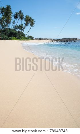 Paradise beach. Beach with fine white sand coconut palm trees. Southern Province Sri Lanka Asia. poster