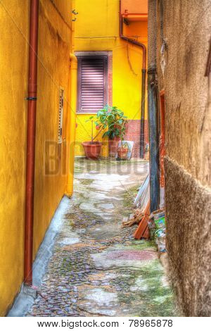 Yellow Backstreet In Bosa