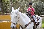 rider little girl jockey hat white horse outdoors park poster