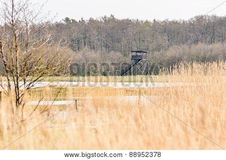 Bird Observation Tower