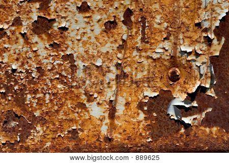 Rusty Plate