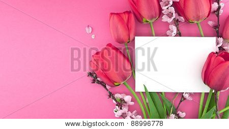 Bouquet Of Pink Tulips And Spring Flowers On Pink Background With Empty Card For Greeting Message. M