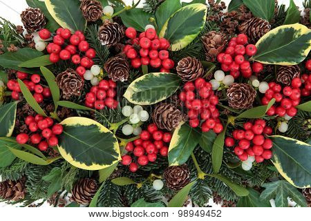 Winter and christmas abstract background with variegated holly, ivy, mistletoe and winter greenery. poster