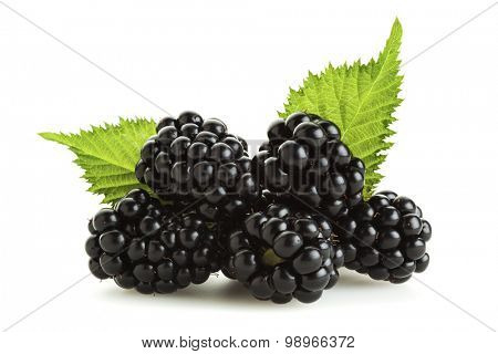 Blackberries isolated on white. Heap of blackberries with their leaves isolated on white background