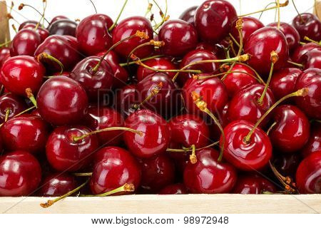 Macro Of Sweet Cherries (prunus Avium)