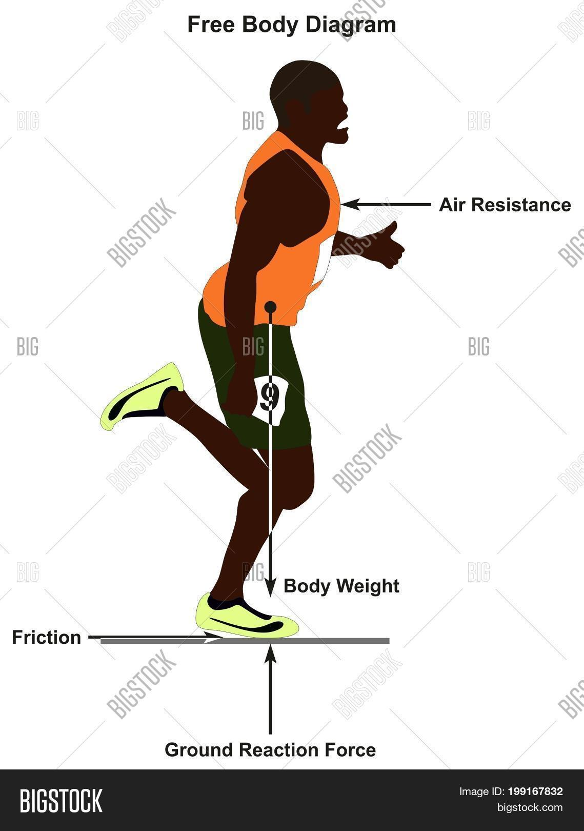 Free body diagram showing man image photo bigstock free body diagram showing a man running in straight line and all forces affect him including ccuart Choice Image