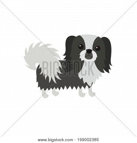 dog Pekingese black white. Flat vector illustration isolated on white background