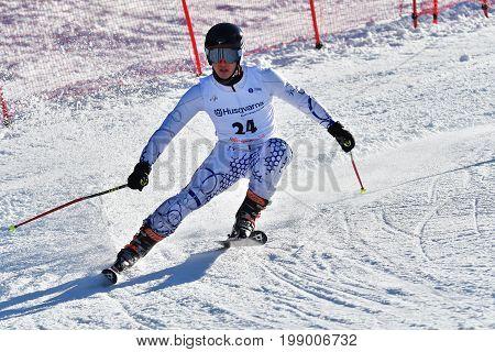 Brasov, Romania - February 2017: Young Competitors In Romania Husqvarna Cup Junior Alpine Ski On 4Th