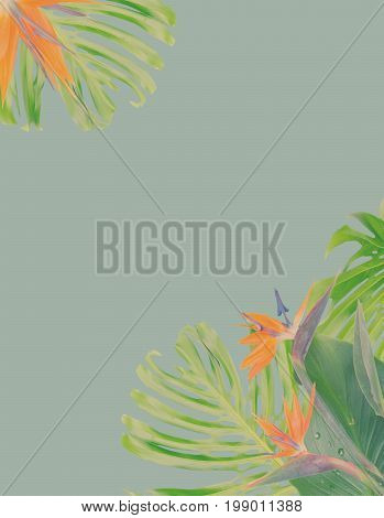 tropical flowers and leaves - border of fresh strelizia bird of paradize flowers and exotic monstera leaves on blue background, retro toned