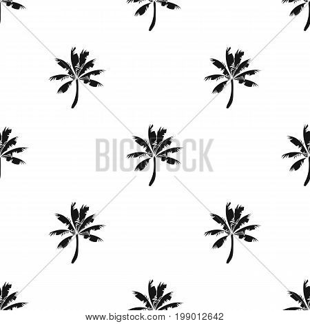 Palm tree icon in black design isolated on white background. Surfing symbol stock vector illustration.