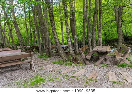 Wooden Benches And Tables In A Forest Near A Mountain River.