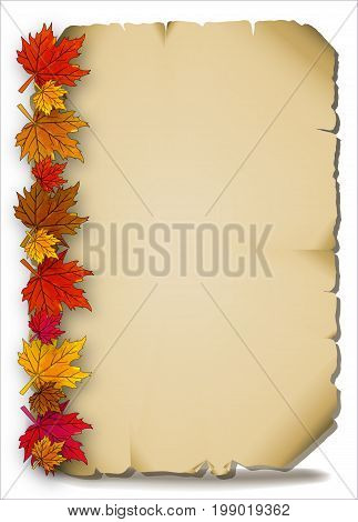 Autumn leaves on an old parchment, vector art illustration.