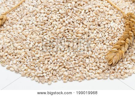 Spelt Heap And Ear Isolated On White Background