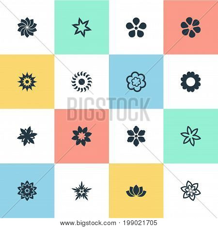 Elements Daisy, Sword Lily, Jasminoides And Other Synonyms Stock, Dahlia And Gardemiya.  Vector Illustration Set Of Simple  Icons.