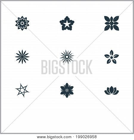 Elements Cypress, Ornament, Camellia And Other Synonyms Floral, Blossoming And Glory.  Vector Illustration Set Of Simple  Icons.