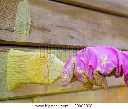 painter's hand in purple glove with brush. background work.