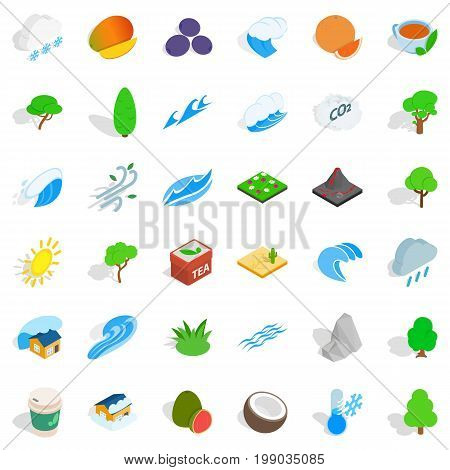 Small tree icons set. Isometric style of 36 small tree vector icons for web isolated on white background