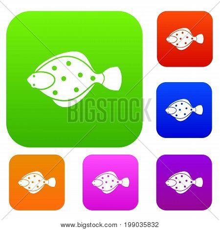 Flounder fish set icon in different colors isolated vector illustration. Premium collection