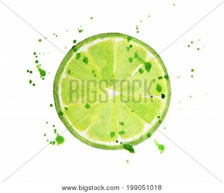 Lime slice with splashes isolated on white background. Watercolor food illustration, art painting