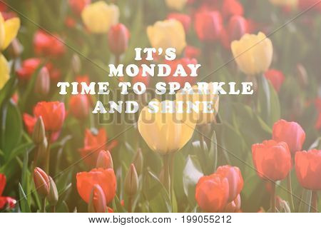 Monday inspirational greeting - It's Monday time to sparkle and shine. Retro styled blurry background.