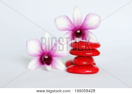 Red pebbles arranged in Zen lifestyle with a orchid on the left side and one on the pebbles on a white background
