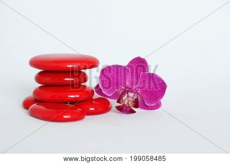 Red pebbles arranged in zen lifestyle with a dark pink orchid on the right side on white background