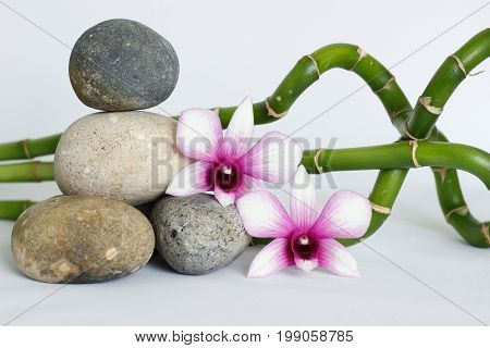 Red pebbles arranged in zen lifestyle with a dark pink orchids on the right side of the bamboo straight and twisted the whole on white background